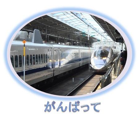$ALBION・IGNIS ~ききかじり~-2013(1-7)